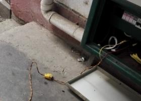 这个算不算偷电???