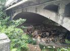 是谁把二桥下面公共地方和通道占用这么多年?