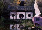 太白公园(冬月)