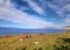 我们新疆好地方一一塞里木湖(跟团纪实)