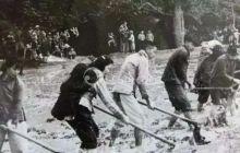 六十年代人民公社生产队干活老照片!