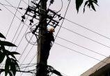 沱牌花园门口电杆突然爆炸,好黑人哦,电也停了,咋回事哦?