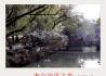 李白故里之春