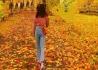秋天的季节