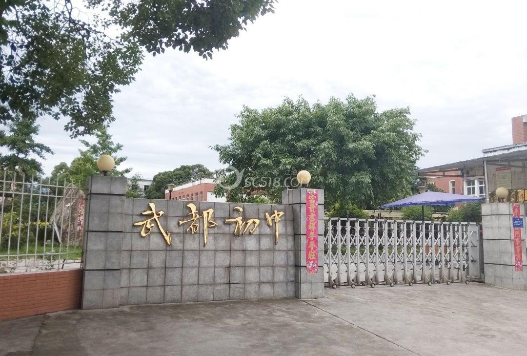 江油武都初中校大门.jpg