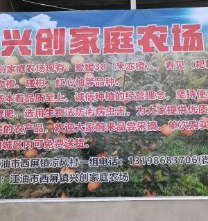 欢迎订购爱媛橙5元一斤五斤起江油城区包送也可现场采
