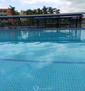 江油晓蕾游泳池(外国语学校内)欢迎你