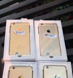 出iPhone6Plus 金色美版全网,保修6个月