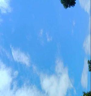 今天下午好天气,