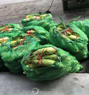 关于助农水果玉米的最新情况与售后补偿!