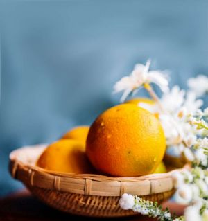 静物练习   褚橙
