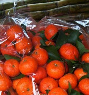 又回来了一车砂糖橘!3元一斤!十斤起送