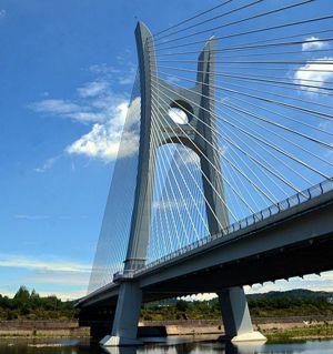 涪江五桥附近的湿地公园开工了