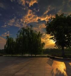 温地公园的黄昏