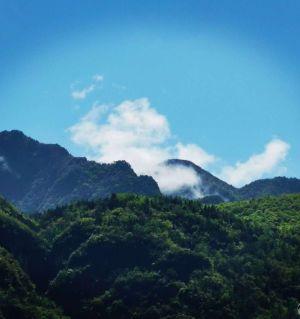 藏在江油山里的一个小村庄,依山傍水,景色美不胜收