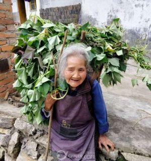 今天出去徒步看到一位90岁的婆婆还能背50_60斤