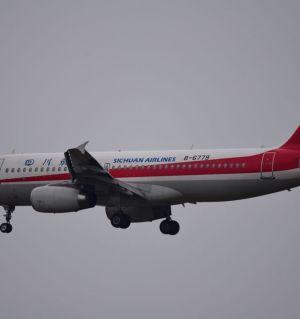 成都空港花田拍飞机
