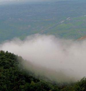 觀霧山觀云霧