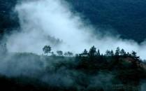 心灵的净土----江油美景(观雾山)