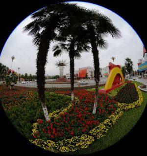 慶國慶70周年