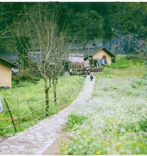 中南半岛南方城市和北边的农村